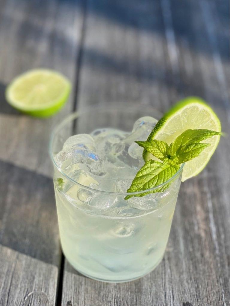 ginger beer mocktail gin gin mule